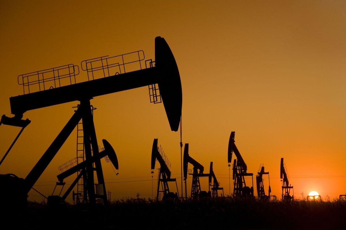 Training Construction Management Oil & Gas