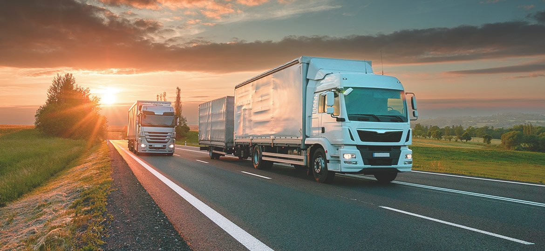 Training Transportation Management